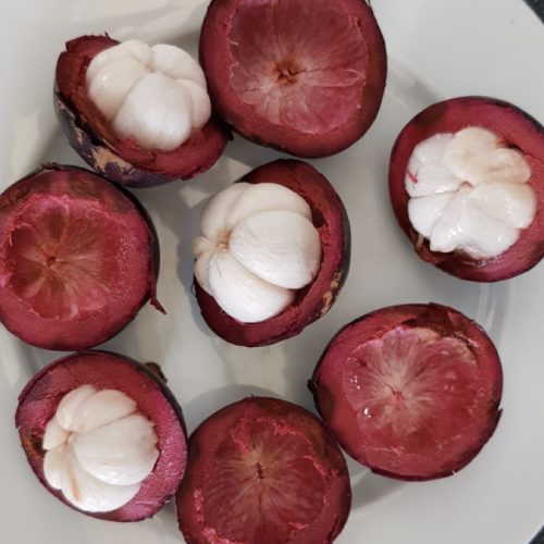 Garcinia Mangostana (mangistan)
