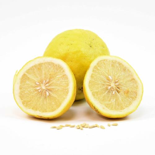 Ponderosa Lemon.