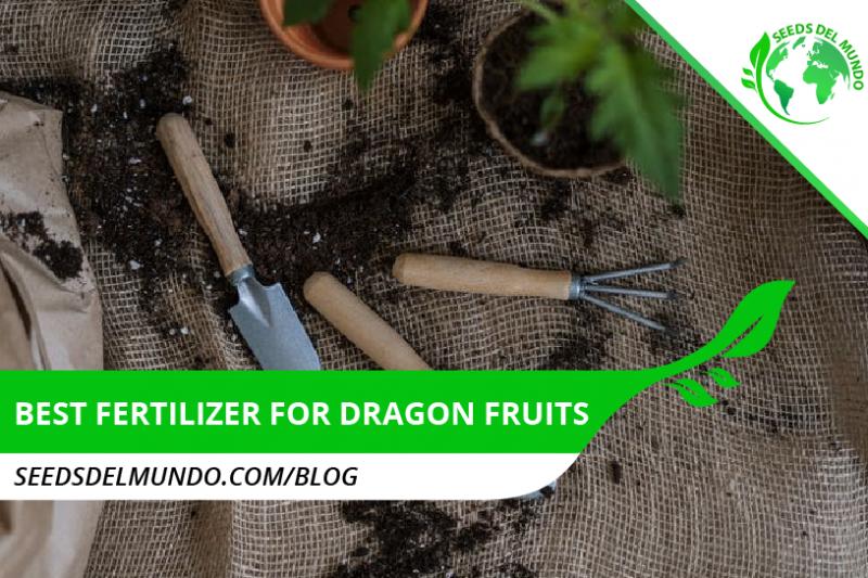 Best fertilizer for dragon fruits