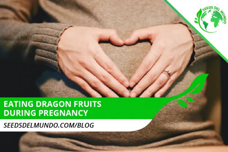 Eating dragon fruit during pregnancy