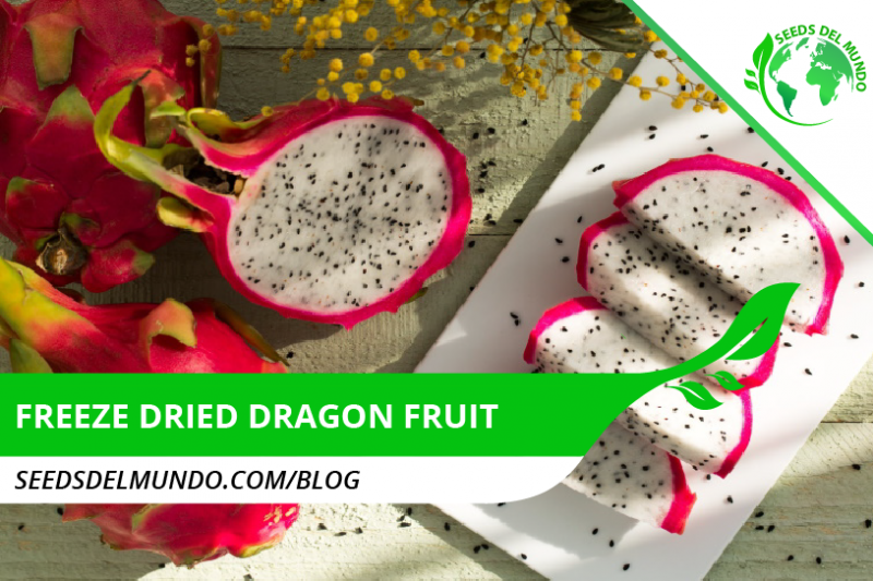 freeze dried dragon fruit