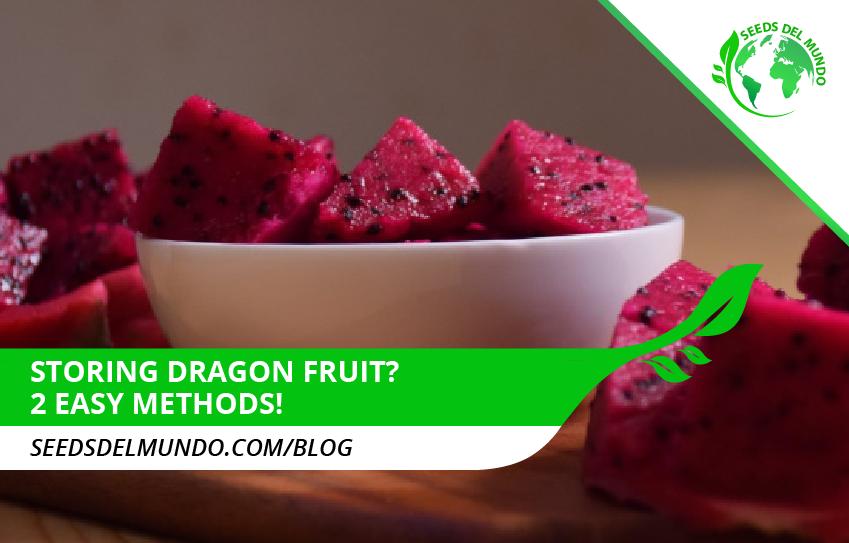 Storing dragon fruit