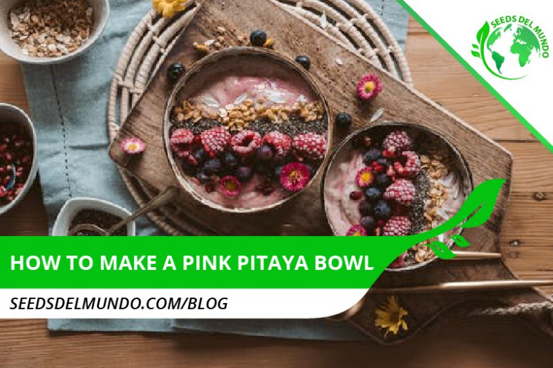 How to make a pink pitaya bowl