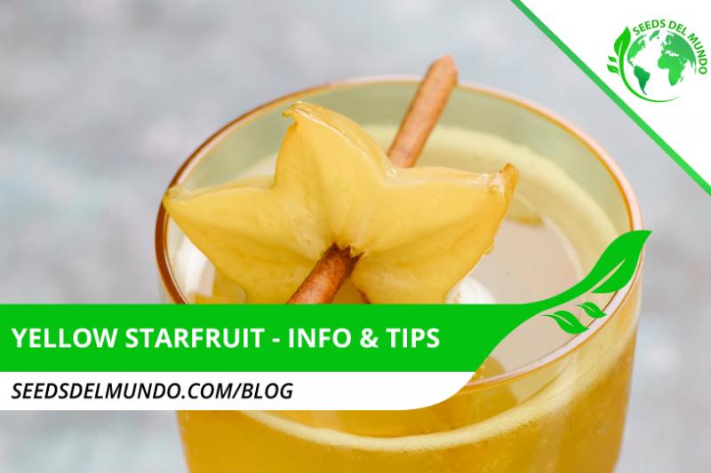 Yellow-Starfruit
