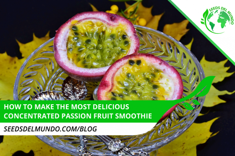 Concentrated-passion-fruit-juice-smoothie